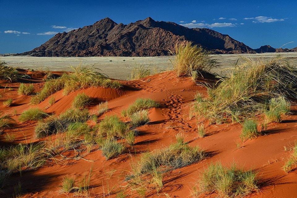 Sossusvlei, Namibië