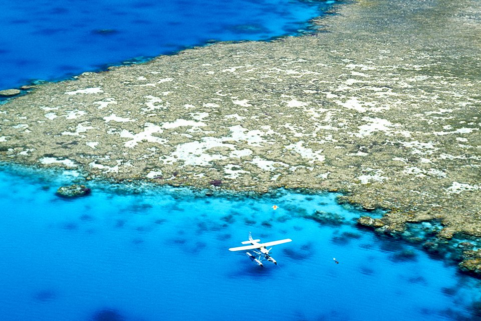 Great Barrier Reef, Australië