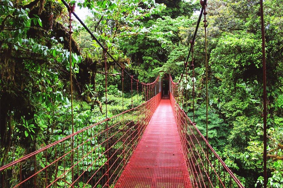 cr_costa-rica_monteverde.jpg