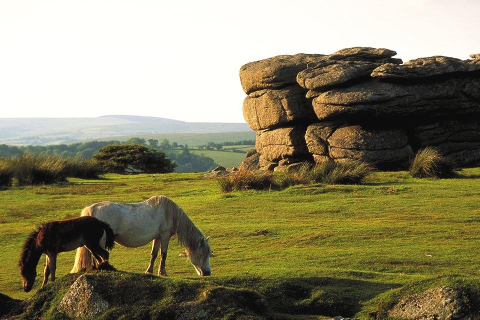 Dartmoor, Groot-Brittannië