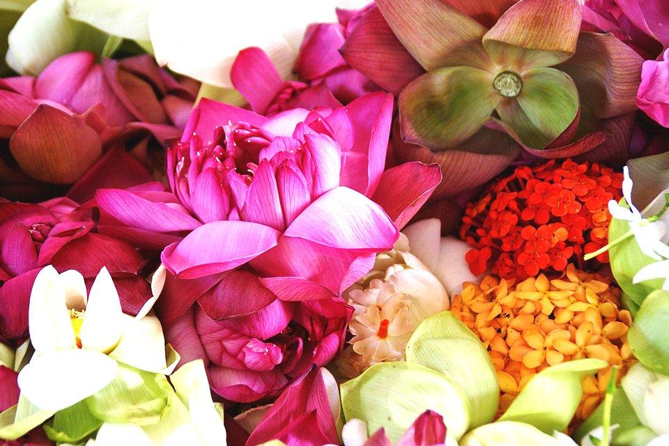Kleurrijk Sri Lanka