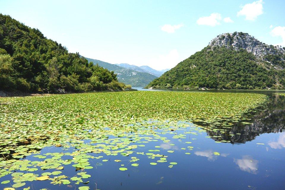 Meer van Skadar, Montenegro