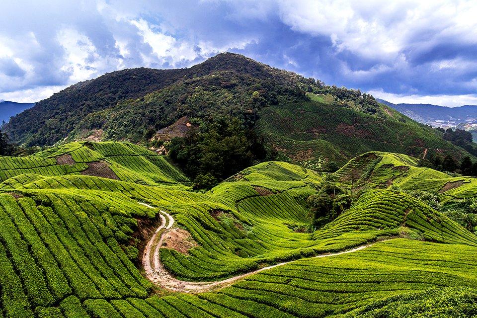 SRC-reizen: West-Maleisië