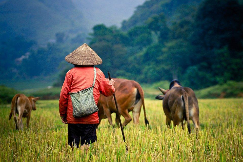 Platteland, Myanmar