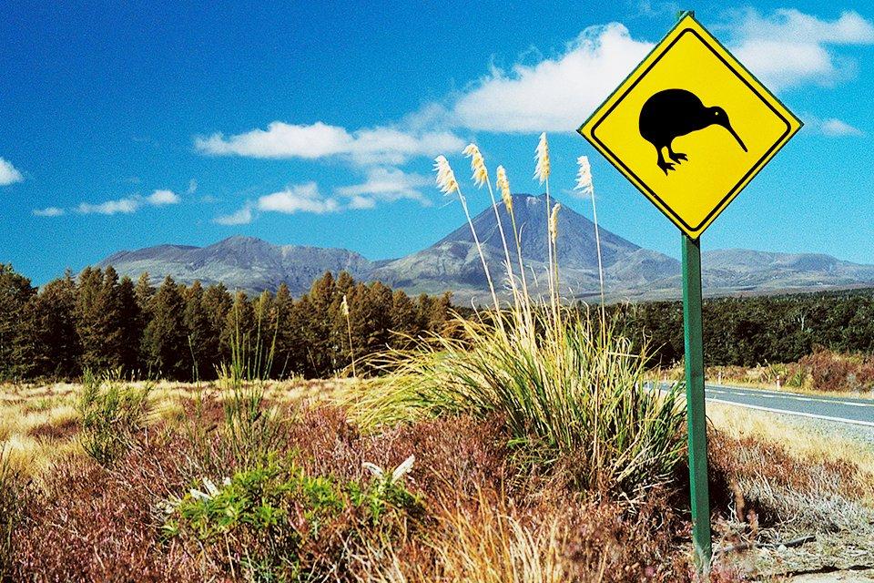 Otorohanga, Nieuw-Zeeland
