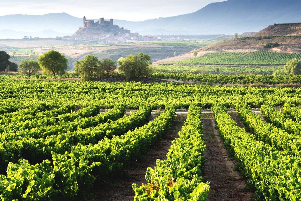 Riojastreek, Spanje