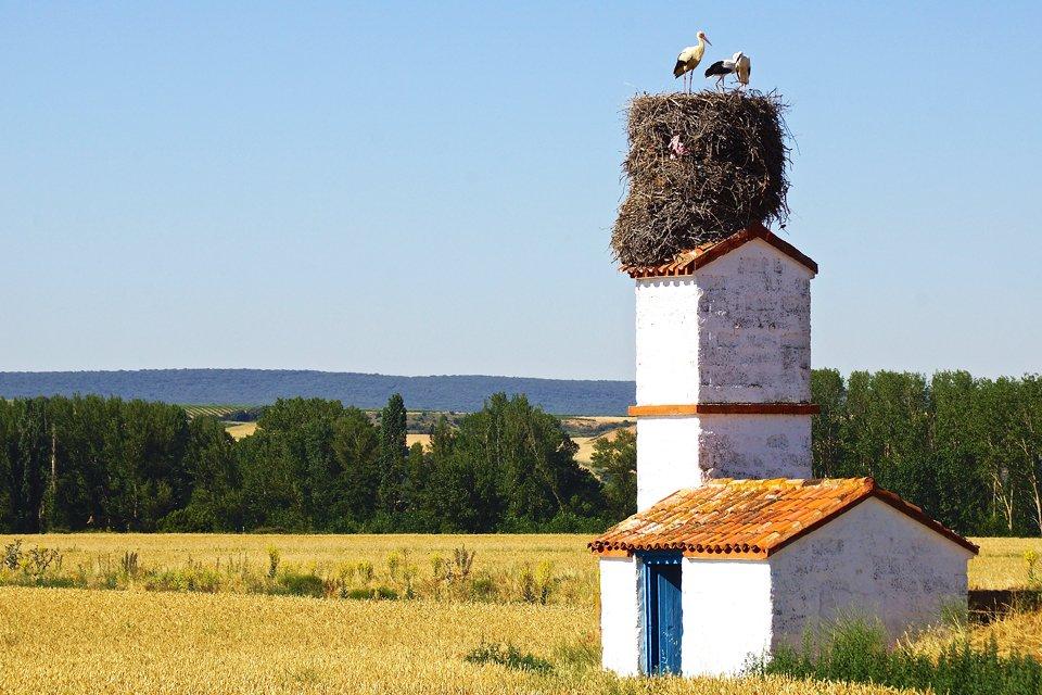 Noord-Spanje, Spanje