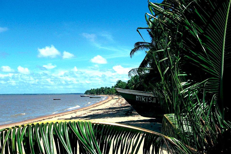 Natuur, Suriname