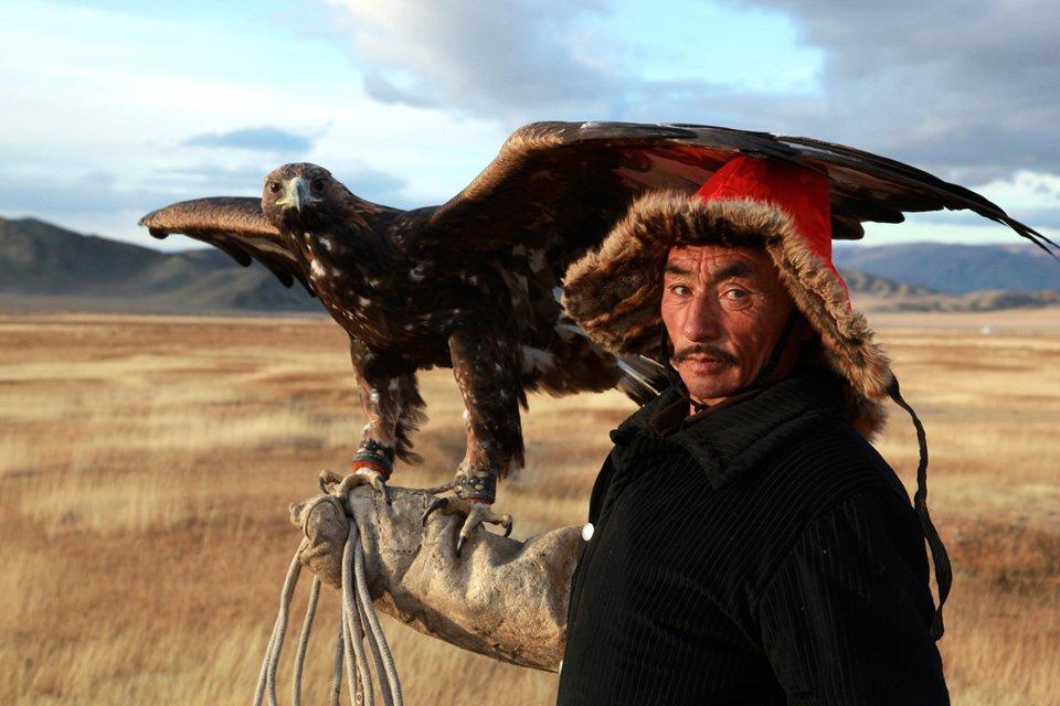 Adelaarsjager, Mongolië