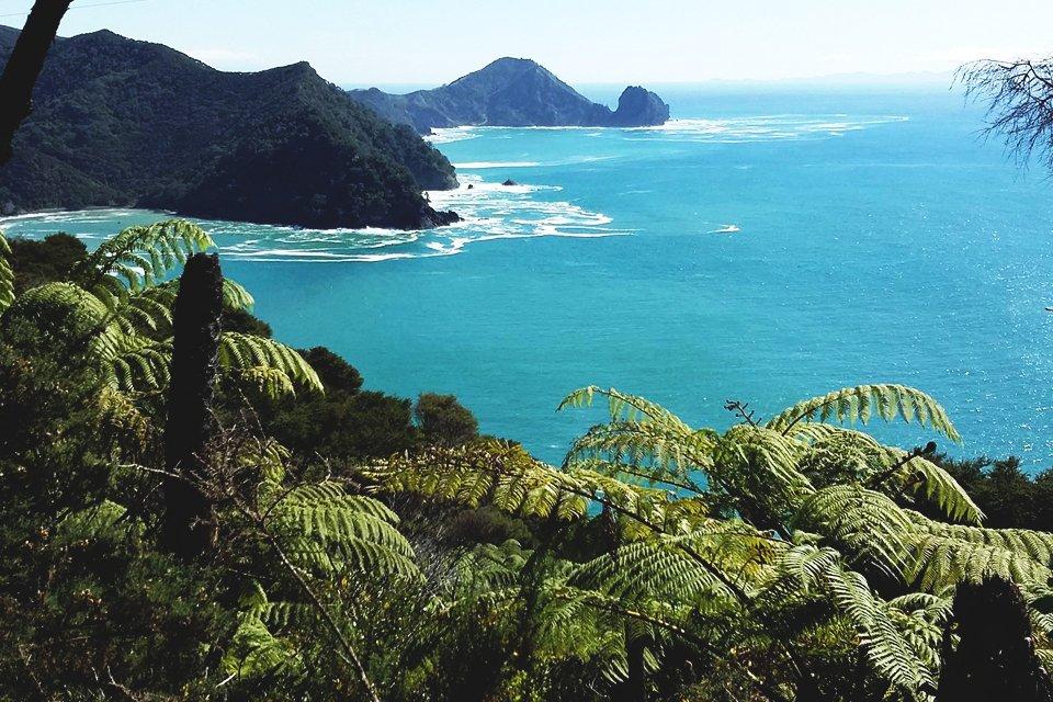Coromandel, Nieuw-Zeeland