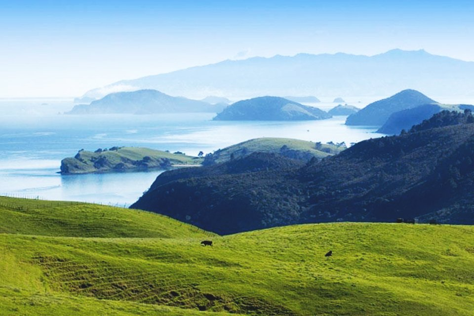 Nieuw Zeeland compleet
