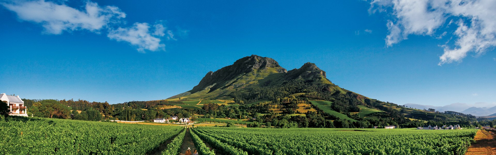 Stellenbosch in Zuid-Afrika