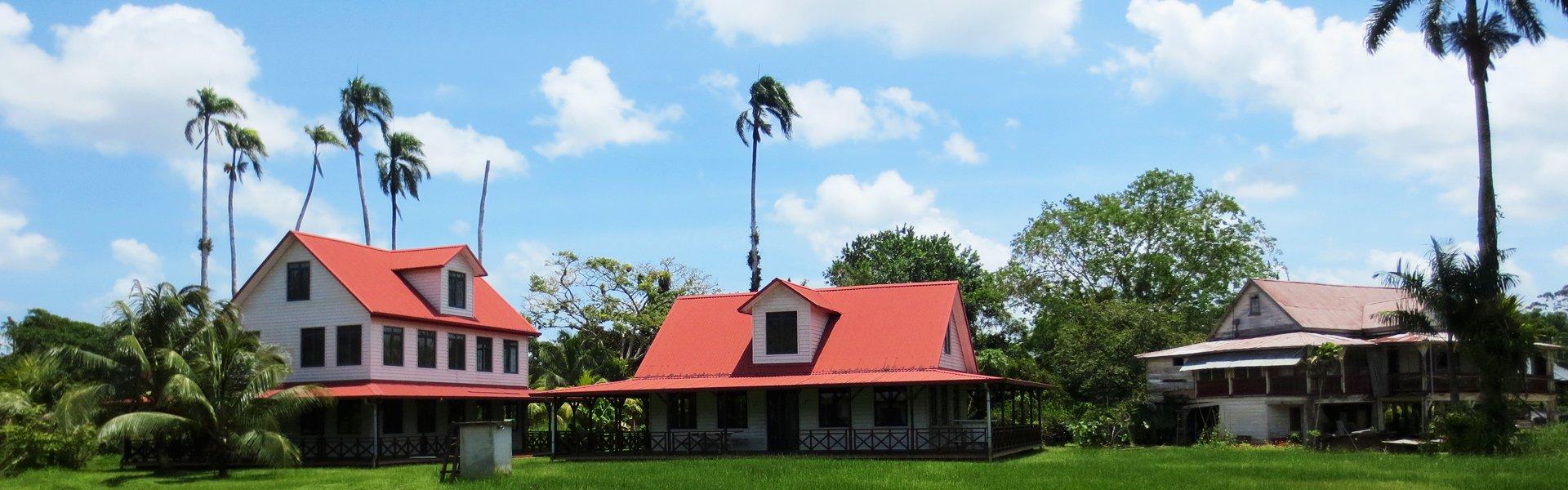 Peperpot plantage Suriname