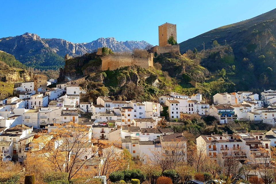 Rondreis Olijvenoogst in Andalusië in Diversen (Andalusië, Spanje)