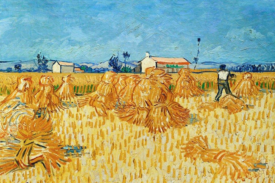 Graanoogst in de Provence van Vincent van Gogh