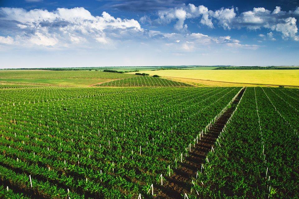 Platteland van Moldavië