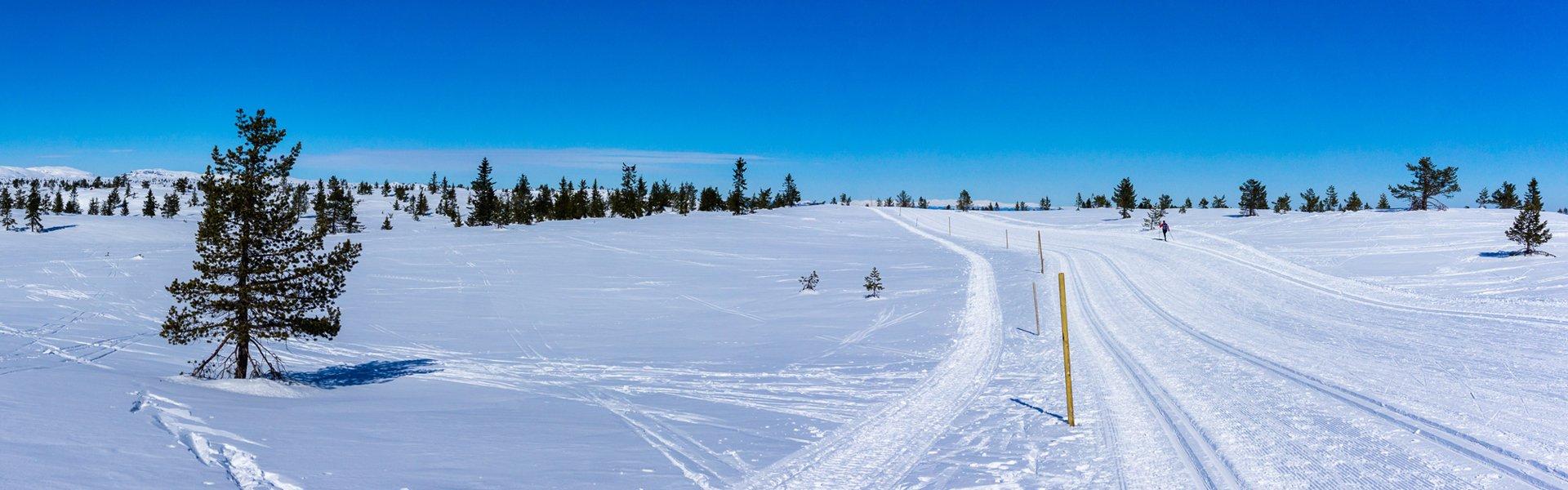 Lapland in de winter
