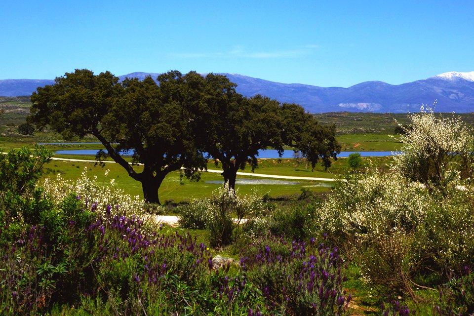Landschap Extremadura, Spanje