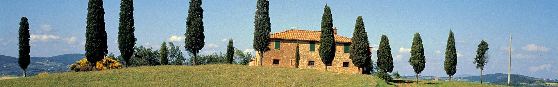 Cultuurvakantie Toscane, Italië