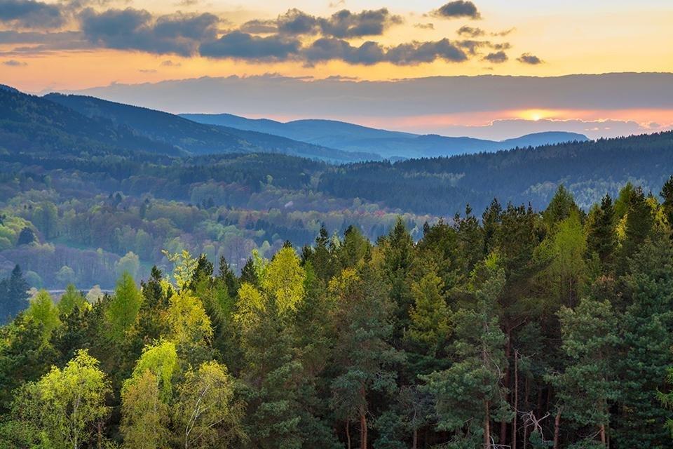 Thüringer Wald in Duitsland