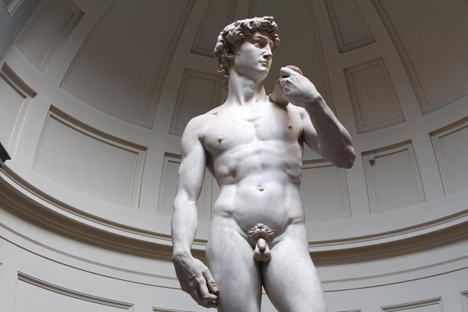 David in het Accademia in Florence, Italië