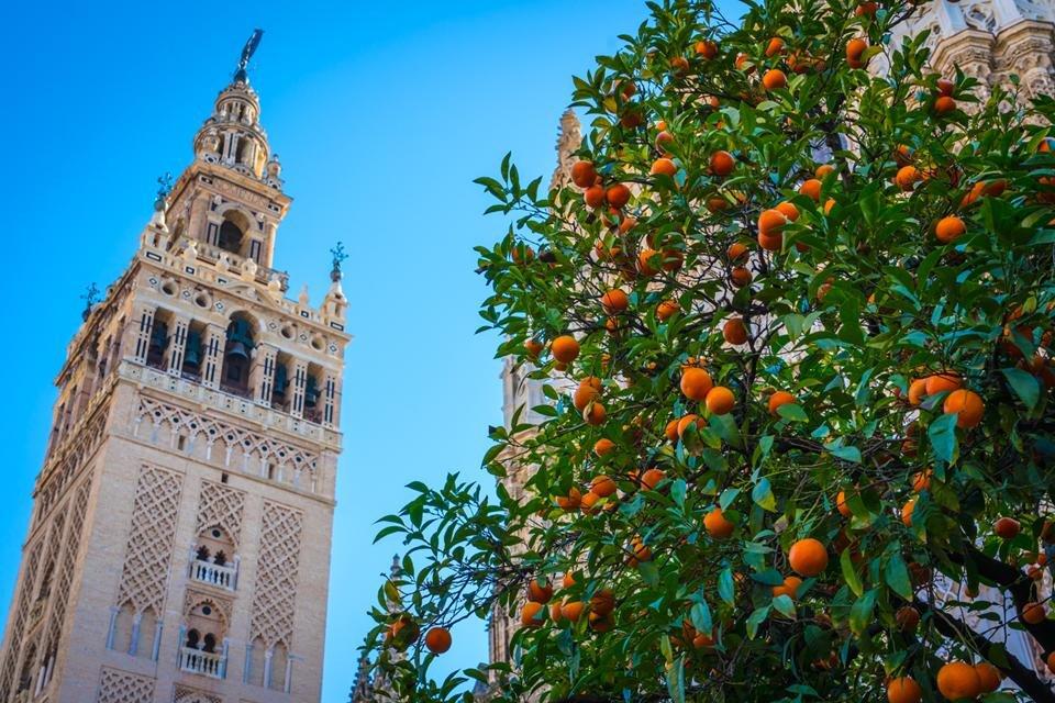 Giralda in Sevilla, Andalusië, Spanje