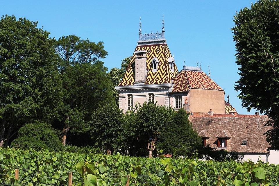 Aloxe Corton, Bourgogne, Frankrijk