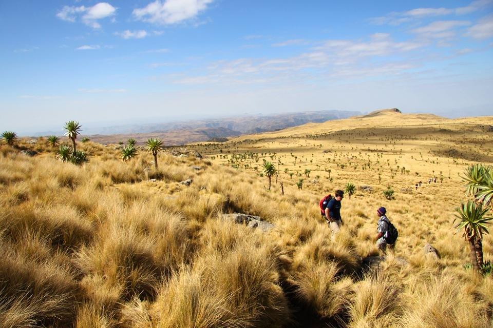 Woestijn in Ethiopië