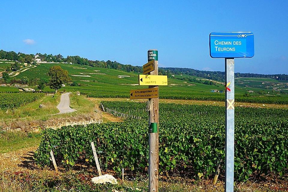 Wandelroutes in de Bourgogne, Frankrijk