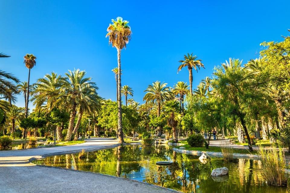 Palmbonen in de botanische tuin Huerta del Cura in Elche, Spanje