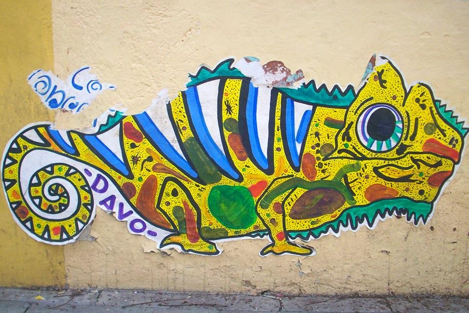 Street art in Oaxaca in Mexico