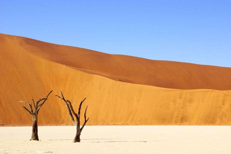 Deadvlei, Namibië - Foto door Peter van de Wiel