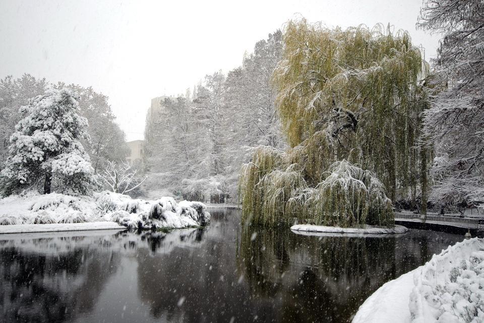 Novi Sad, Servië, in de winter. Foto van Toerisme-organisatie Novi Sad