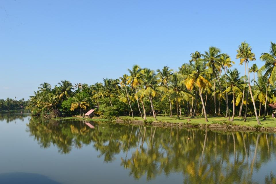 Backwater in Kerala, India